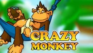 Сrazy Мonkey